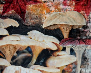 Mushroom detail