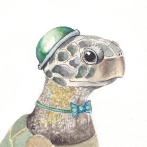 The Dapper Sea Turtle, 3 1/2