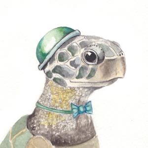 The Dapper Sea Turtle, 3 1/2