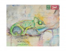 Cory the Chameleon