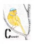 C-Canary