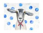 Phoebe the Goat