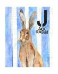 J-Jack Rabbit