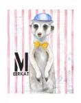 M-Meerkat
