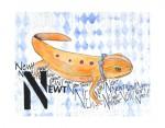 N-Newt