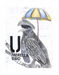 U-Umbrella