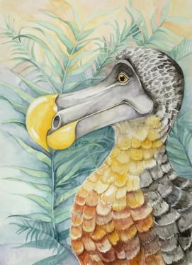 The Dodo, framed watercolor original. Represented by Williamsburg Art Gallery 440A W Duke of Gloucester Street Williamsburg, VA 23185 (757) 565-9680