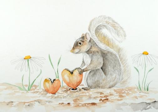 Squirrel Valentine