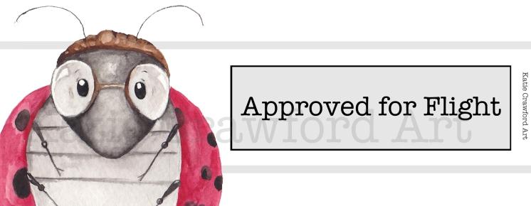 Approved for Flight Ladybug
