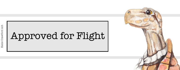 Approved for Flight Turtle