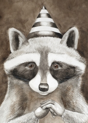 Masquerade Raccoon