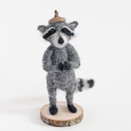 Wesley the Raccoon
